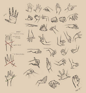 Hands Reference I