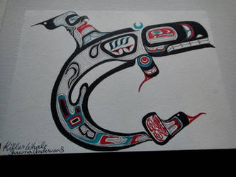 Killer Whale by ShawnaAnn