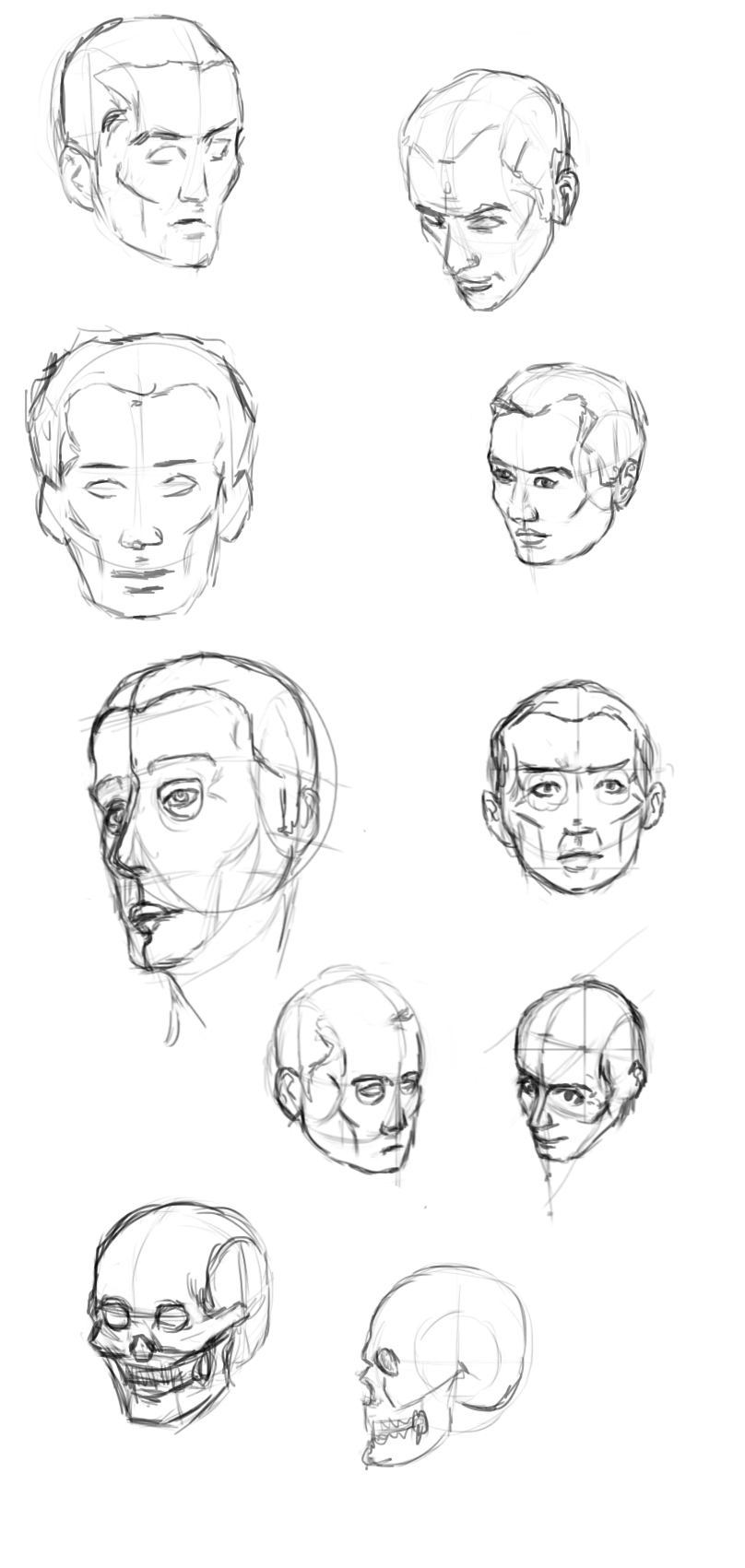 Head study 2 by IRCSS
