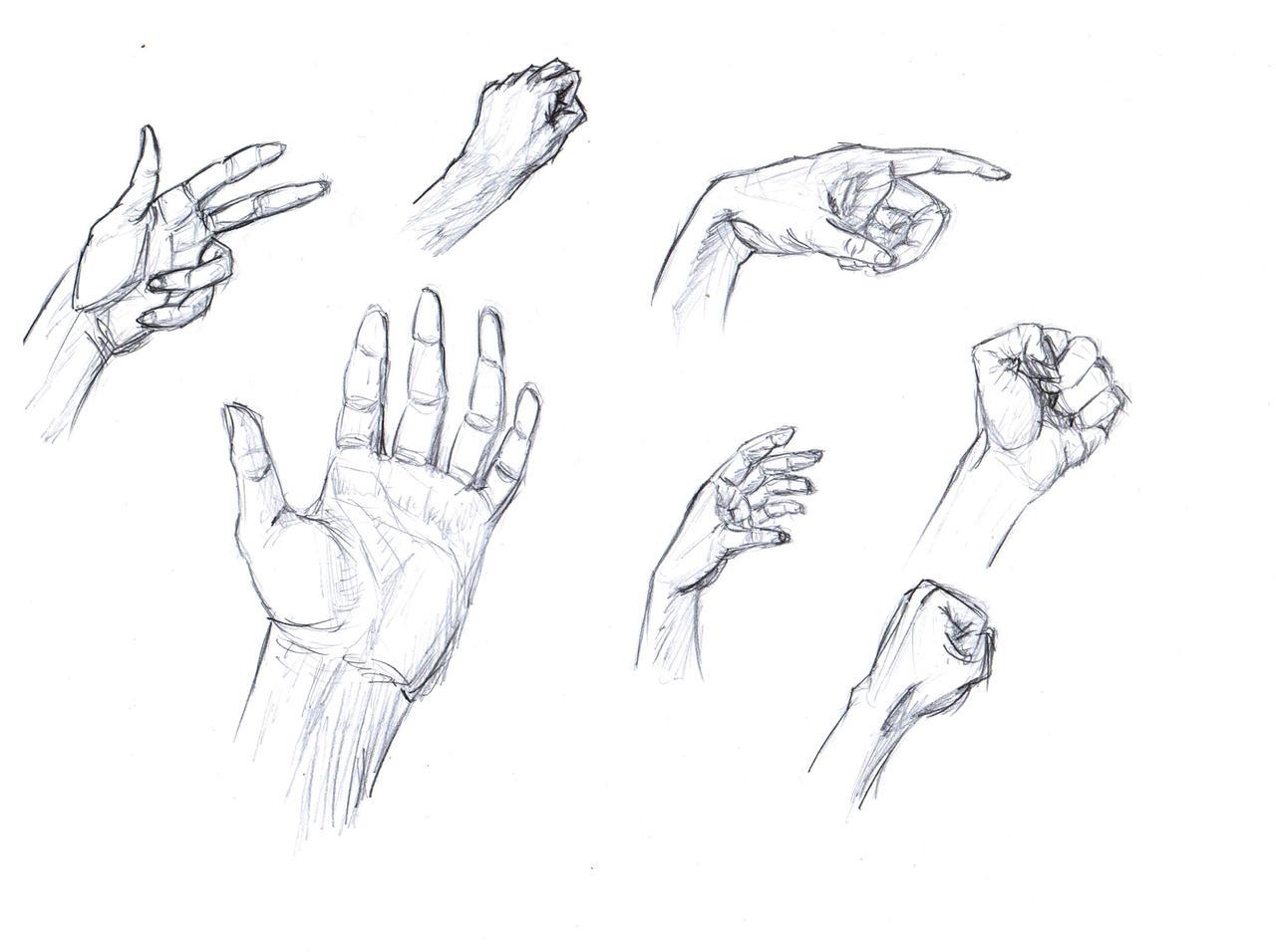 Hands-1 by IRCSS