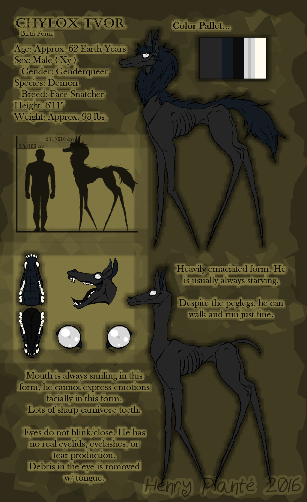 Chylox Reference Sheet Birth Form by no-guy