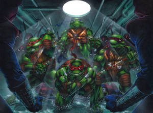 Heroes in a Half Shell, Turtle Power!