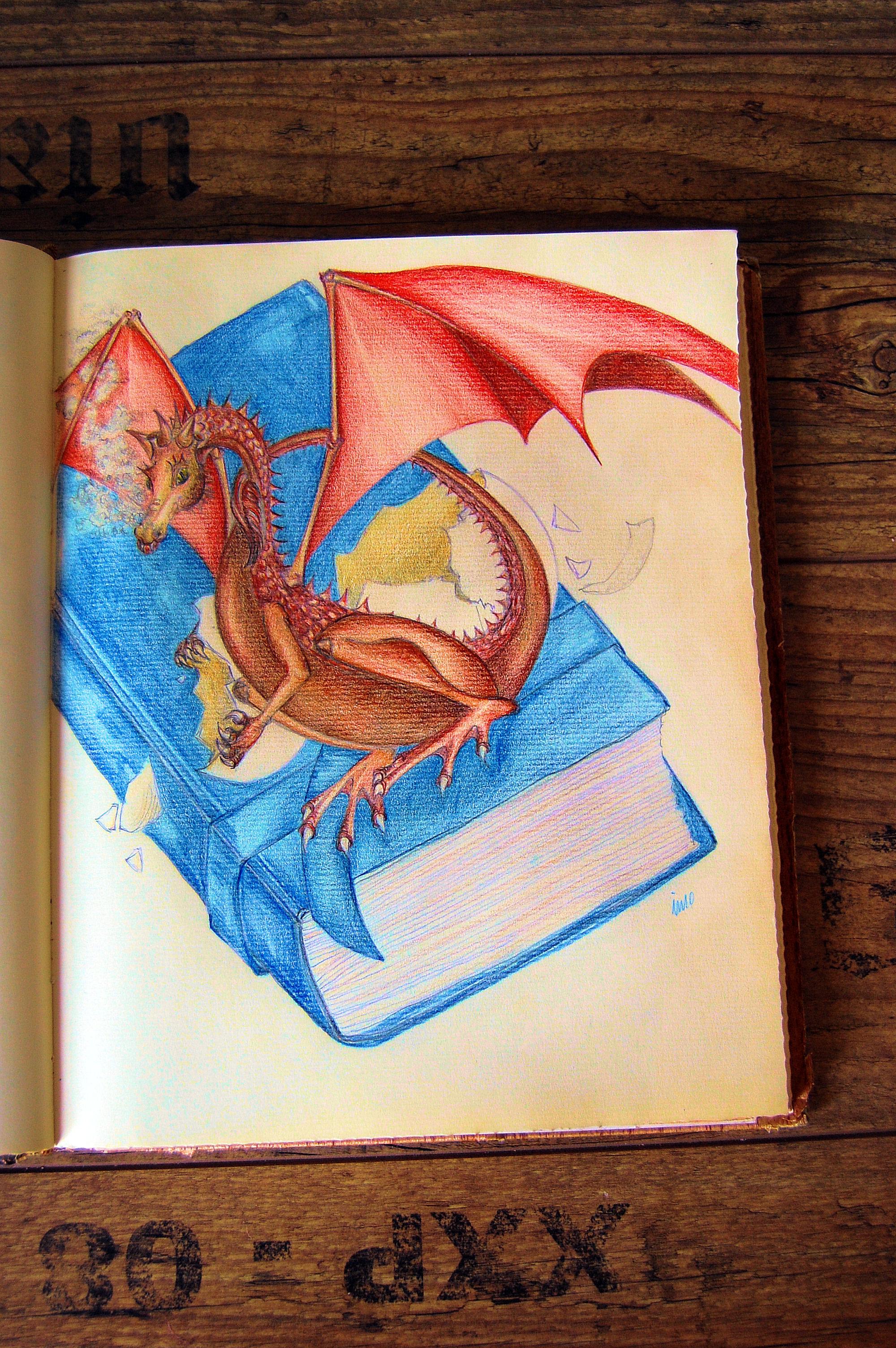 Dragon Nov Imo 002 by imoart