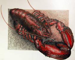 lobster by imoart