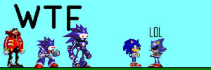 Sonic and Metal Sonic
