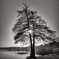 Peaceful Lake by julie-rc