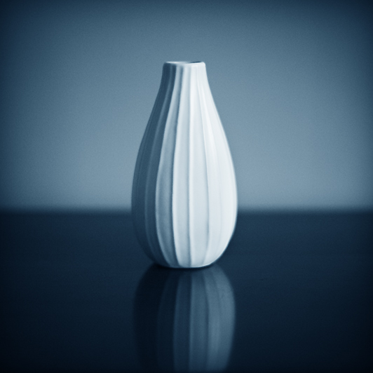 the vase by julie-rc