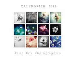 Calendar 2011 by julie-rc