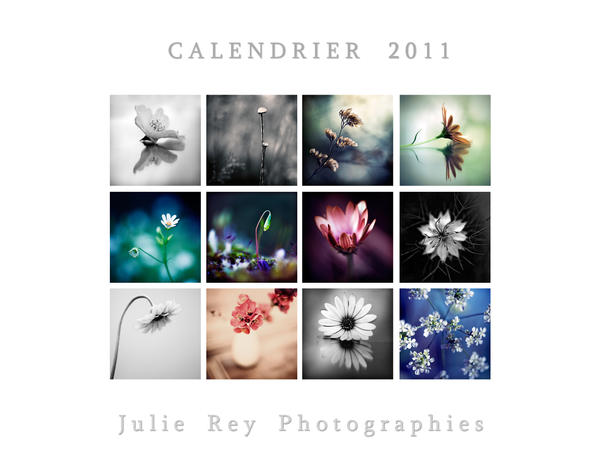 Calendar 2011 by julie-rc