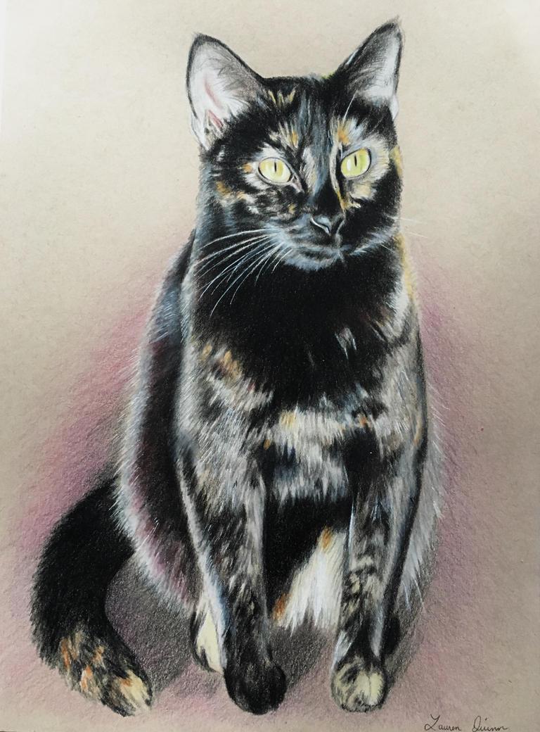 Tori Cat by mslaurnq