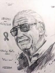 En Honor a Stan Lee / In memory of Stan Lee by Midieka