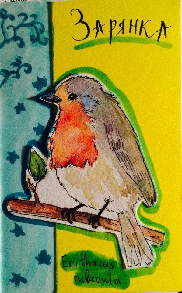 Robin by NorthernLantern