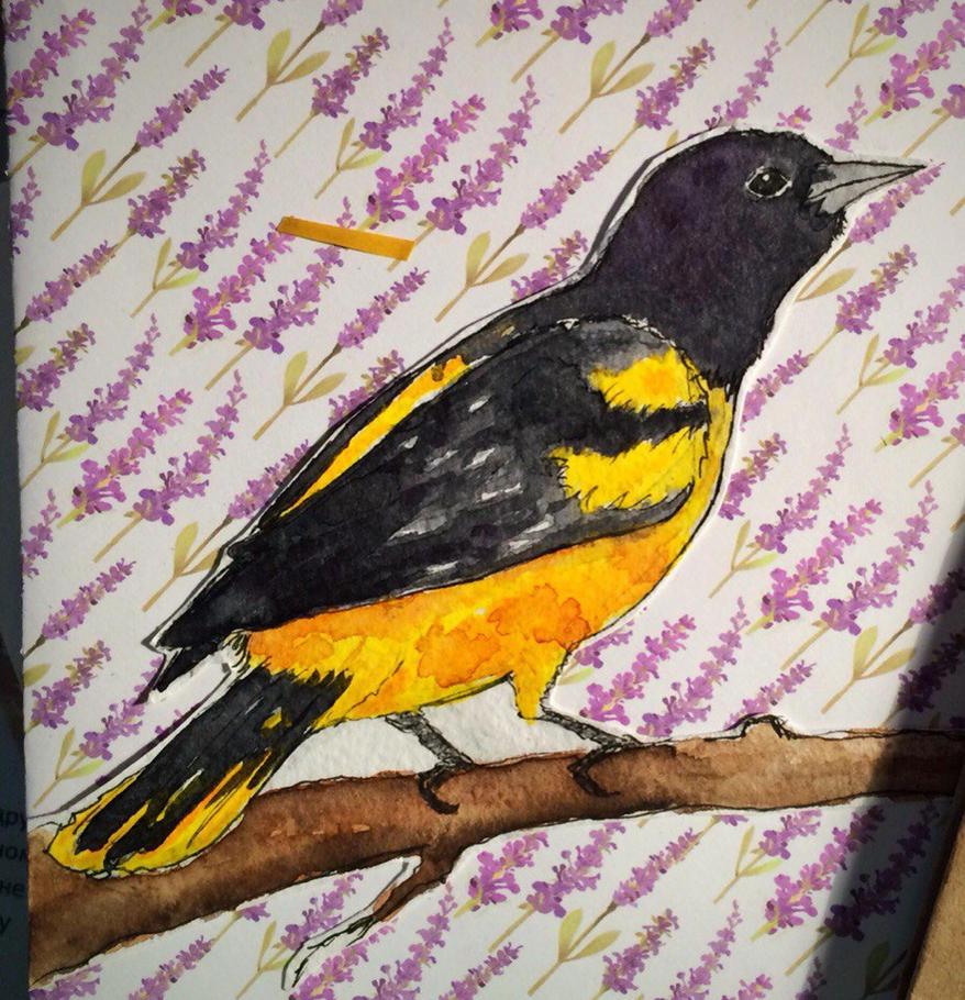 Yellowbird by NorthernLantern
