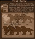 Resources: Understanding Coat Types