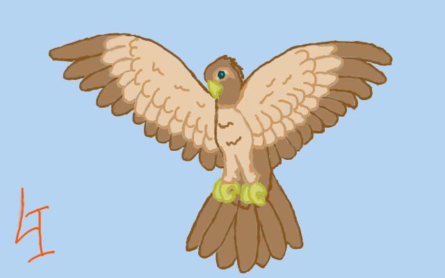 Drawing of Cartoon Hawk Flying - Bing images Flying Hawk Cartoon