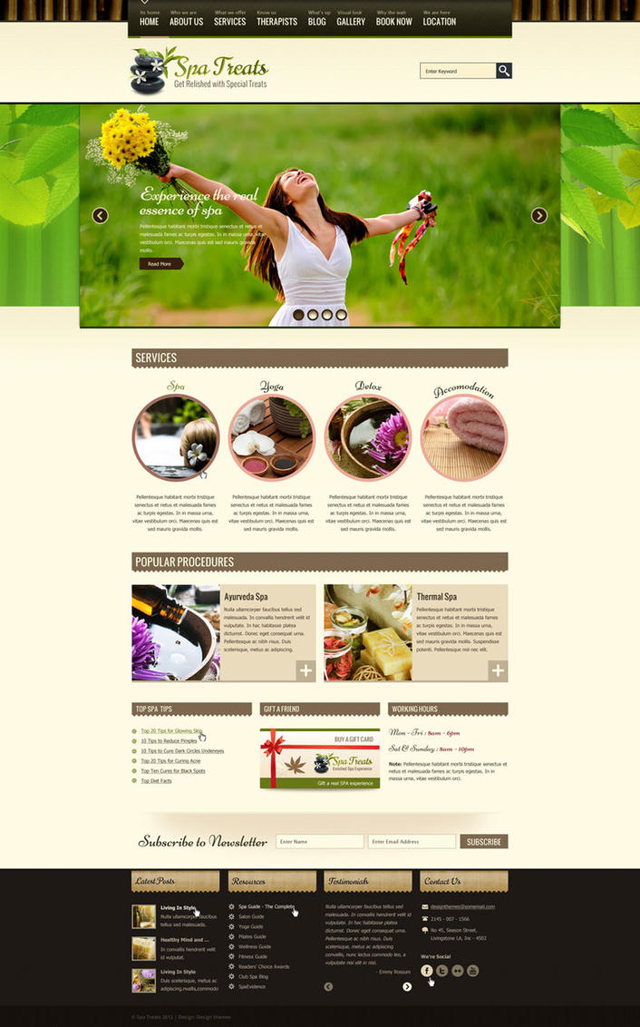 Spa Wordpress Theme by DesignTheme
