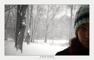 Cold Stare Photograph by goteki