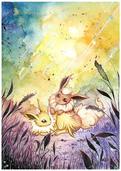 Flareon and Jolteon in the meadow