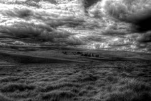 Dartmoor by DemonsWrathPhotos