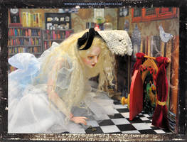 Alice Collection 2013 067 (2)
