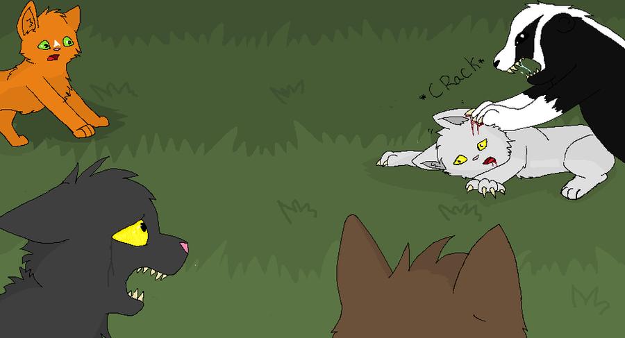 Warrior Cat Oc Amv