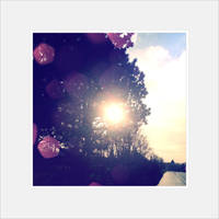 sometimes sunny by AMPhitheatre