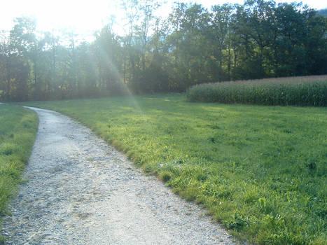 Meadowstock 1