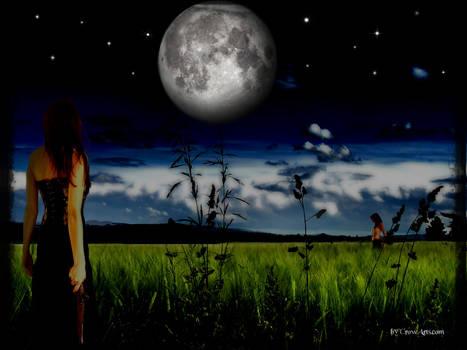 Moon Light Meeting