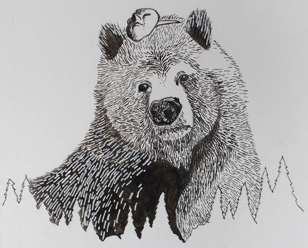 Bear Bear by jimmylorunning