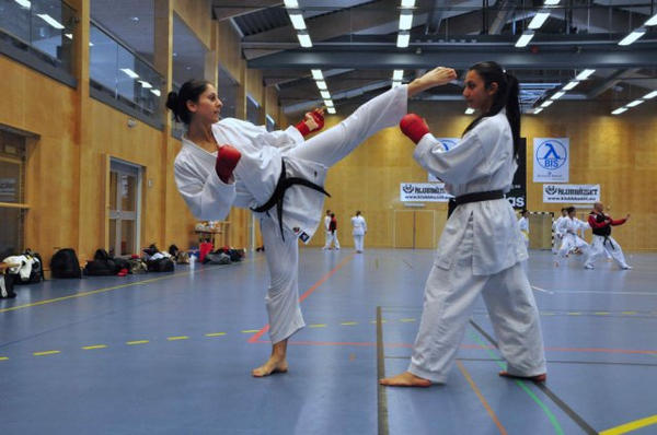 sex-images-pretty-girl-karate