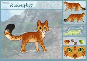 - Risingkit - SnowClan - Kitten - by Warriorheartxxx