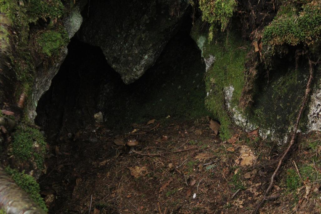 Tecumseh 14 by mountainsidestock