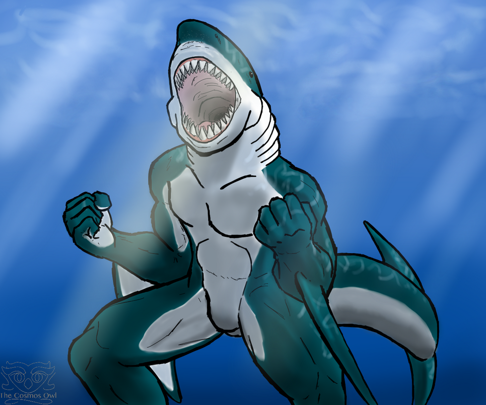 Order the Megalodon by thecosmosowl
