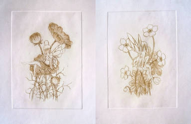 Meadow Fairy and Forest Fairy - drypoint by Jakly