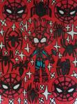 Spider Blaze by LovelyPrincessN64