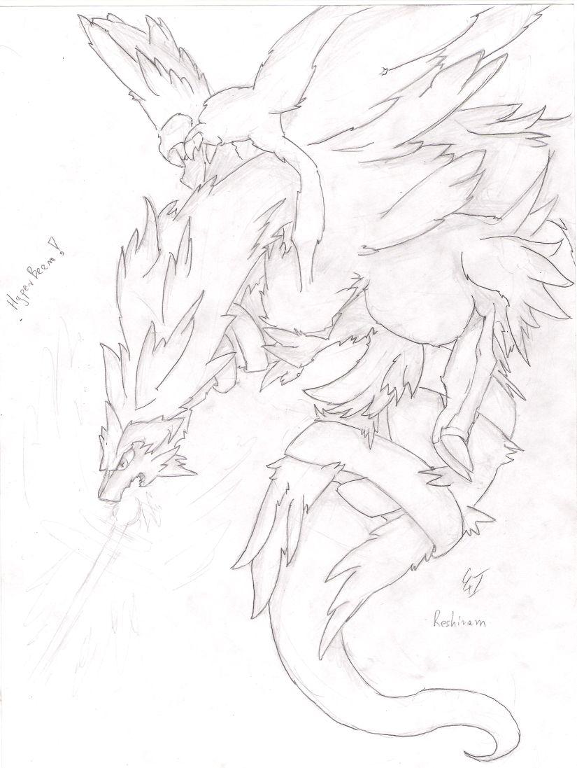 [Obrazek: reshiram_sketch_by_kspmill-d3i0hi3.jpg]