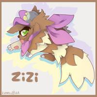 Zizi, the artistic zigzagoon