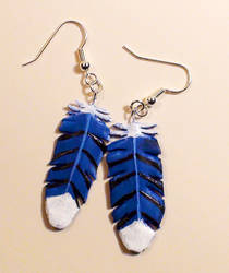 Practice Piece - Blue Jay Feather Earrings by Resonance21