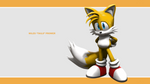 Sonic Channel Wallpaper 2011: Tails