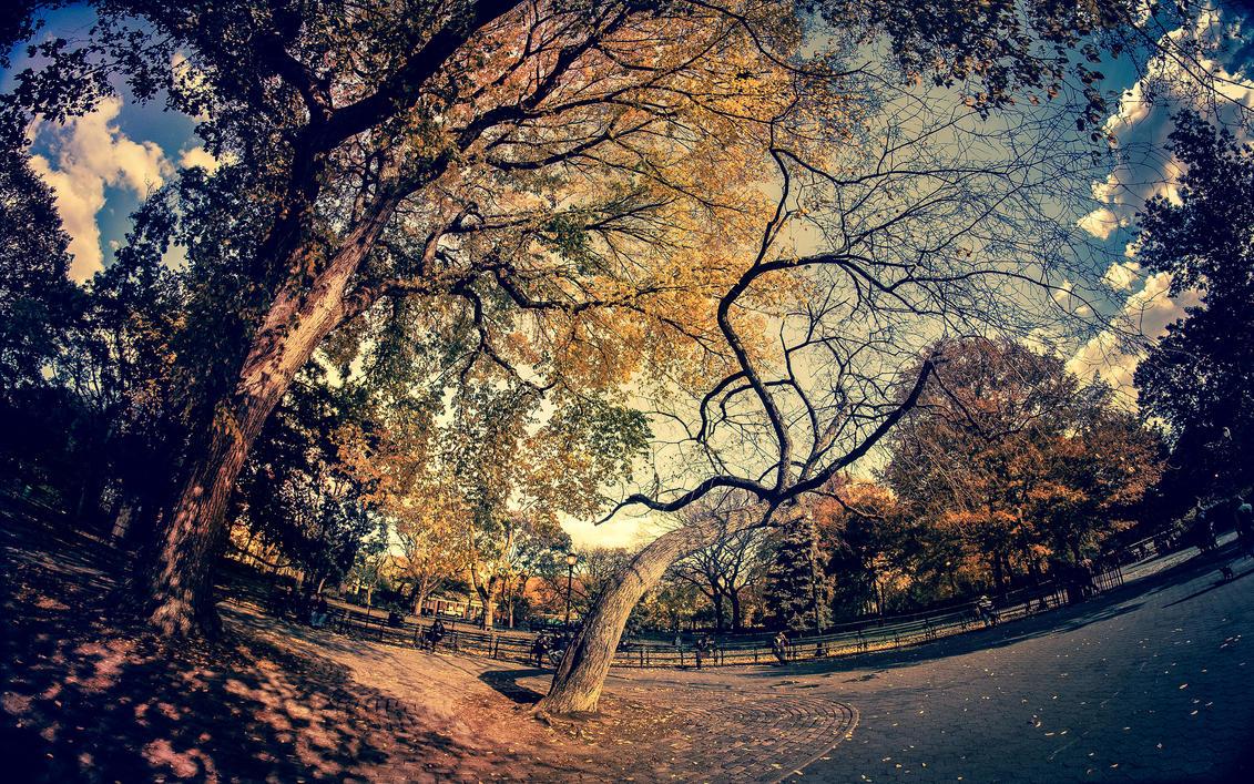 2880x1800 Retina Wallpaper - Autumn by PeterKruczek on ...