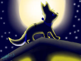 Moonlight GIFT by NekoriSNF