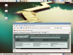 Ubuntu Dapper Drake on VAIO