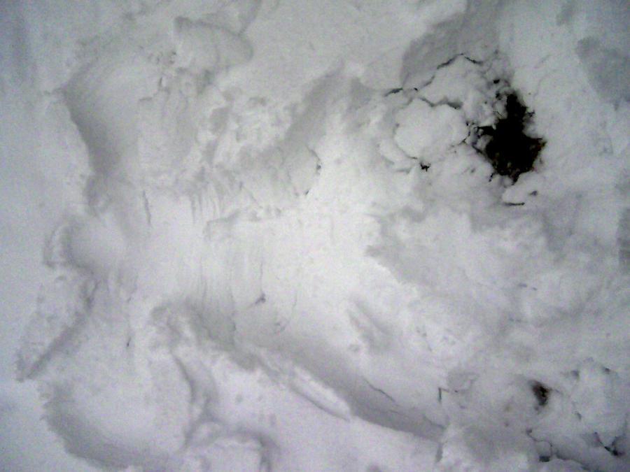 snow angel by sheppaja