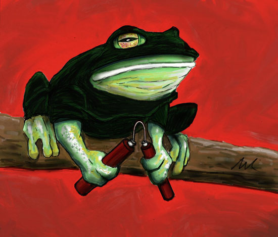 Ninja Frog By Haywirevisions On Deviantart