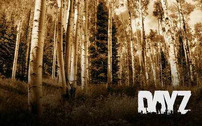 DayZ Forest by onehalfkiller