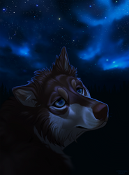 Stars Light The Way by Tarragon-8