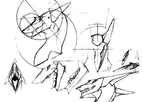 Sergal Head Diagrams Easy Sketch   Previous Notice