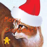 Christmas cat by firebutterfly-narya