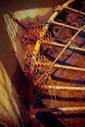Rusty by gsdark-stock
