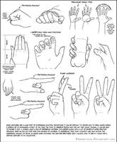 Hand Tutorial by DerSketchie